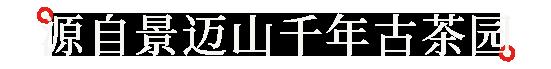 紫竹产品中心